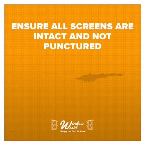 Ensure All Screens Are Intact And Not Punctured