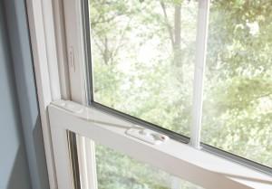 Window detail open