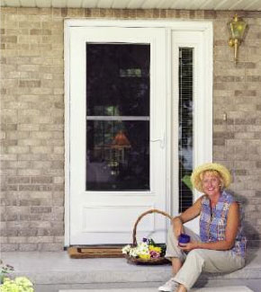 Storm Doors Security Doors Window World Of Memphis